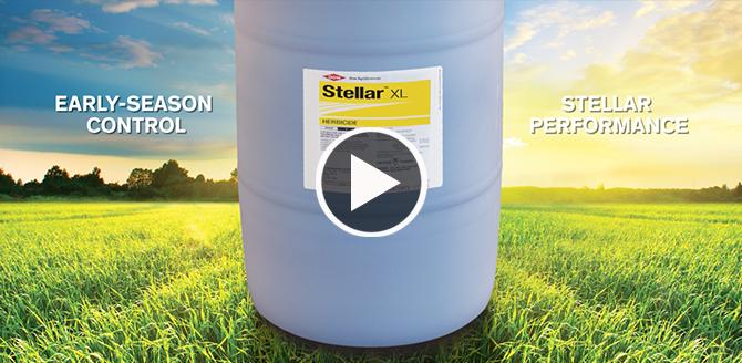 Stellar XL Video