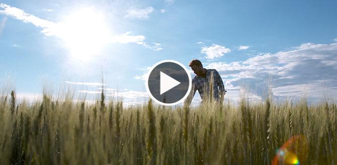 Simplicity GoDRI Video