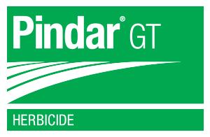 Pindar GT logo