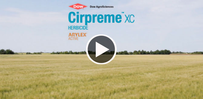 Field with Cirpreme XC Logo