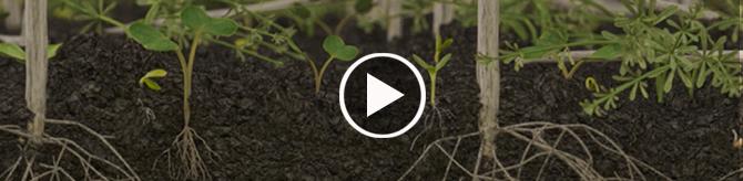 SoilActive Technology